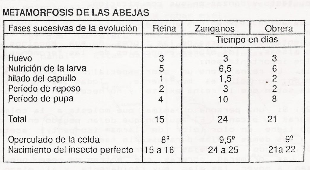 ciclodevida-chart1