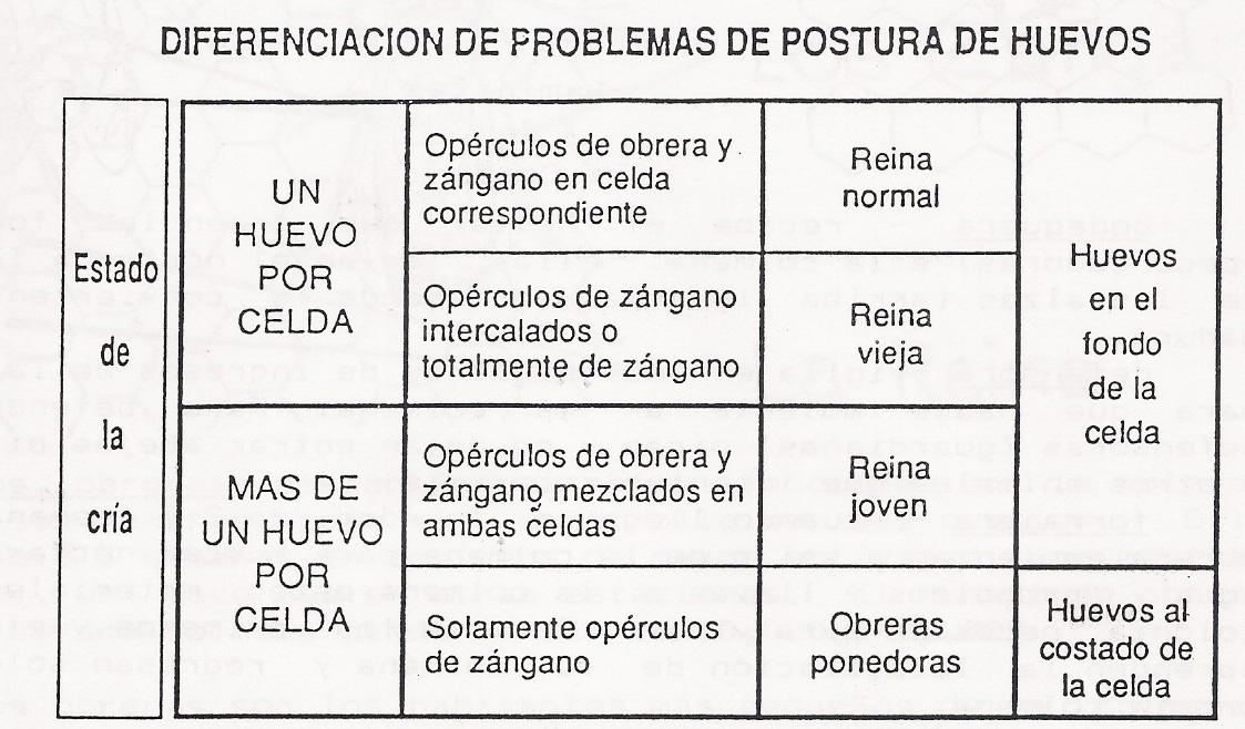 ciclodevida-chart2