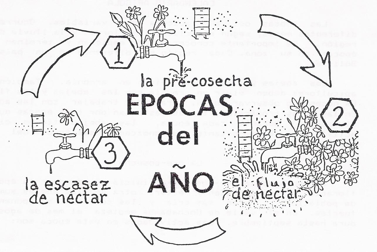 Alimentos Para Los Agricultores Ciclo Anual – las estaciones de las ...
