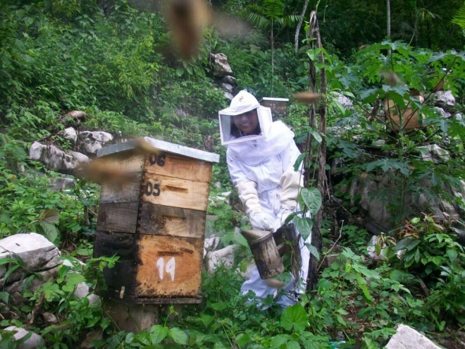 MayaIxil_womanbeekeeper_hivemaintenance-1000x750