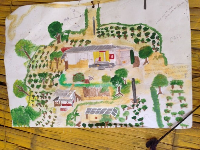 NuevoFuturo_2015July_farm_plan_illustration-660x495