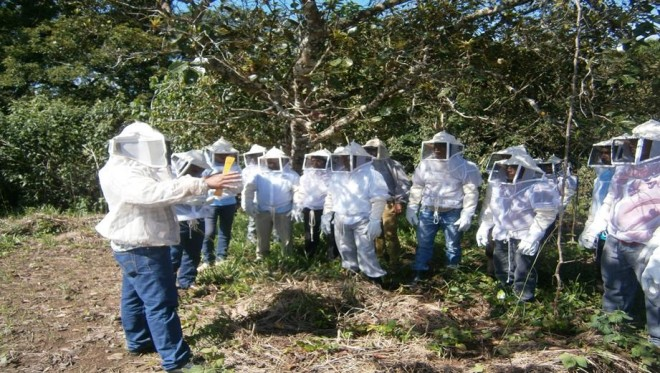 Cesmach_Oct2015_group_new_beekeepers_training_tree