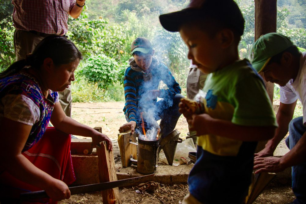 Maya Ixil Beekeeping