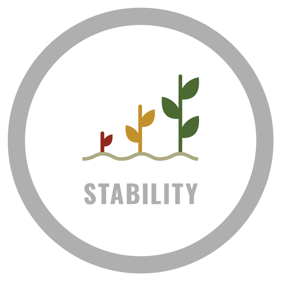 4 pillars food security - stability