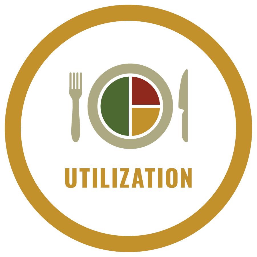 4 pillars food security - utilization