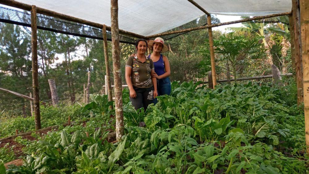 Colombia Nuevo Futuro garden harvest