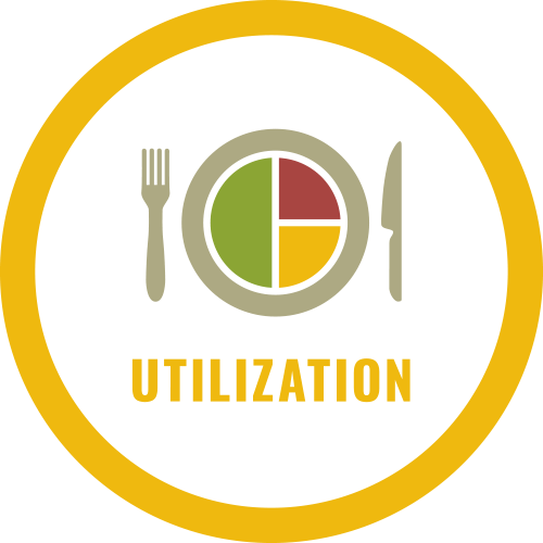 4 Pillars of Food Security: Utilization