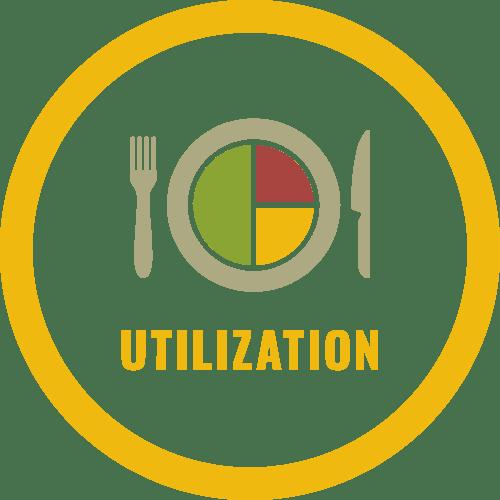 4 Pillars of Food Security: Utilization