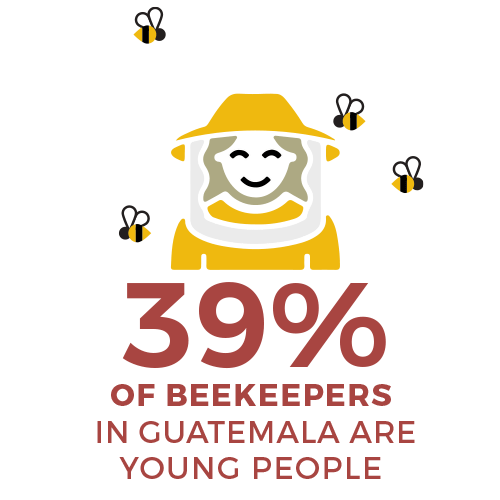 39 percent of beekeepers are young people in guatemala - food 4 farmers 2019