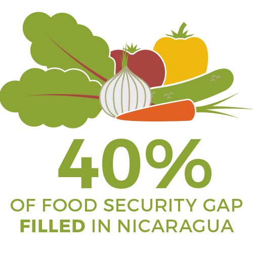 40 percent of food gap filled in nicaragua - food 4 farmers 2019