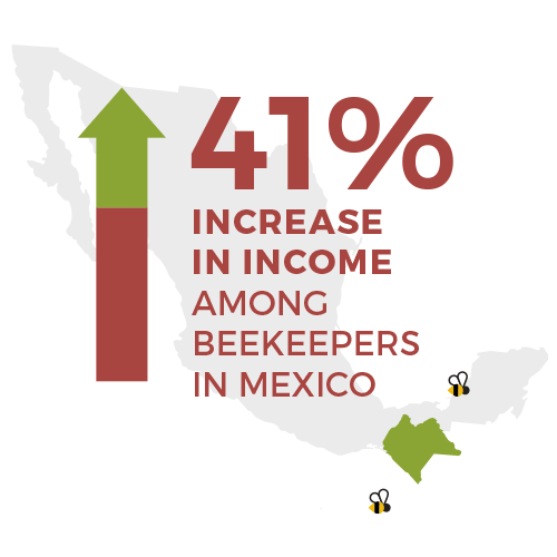 41 percent increase in income among beekeepers - food 4 farmers 2019