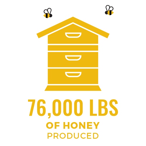 76 thousand pounds of honey harvested - food 4 farmers 2019