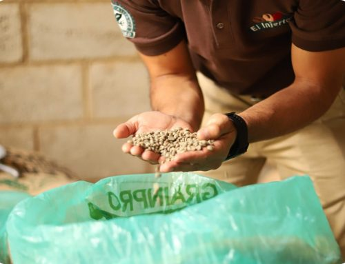 Protected: Food 4 Farmers and GrainPro: A New Collaboration for Food Security